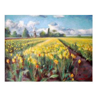 Postal Pintura amarilla de los campos de flor de los