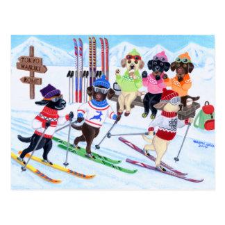 Postal Pintura de esquí nórdica de Labradors