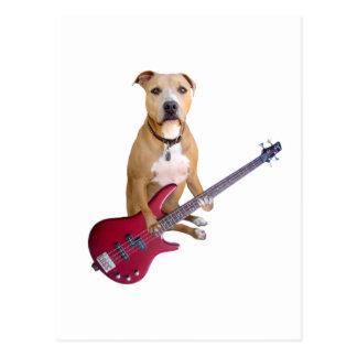Postal Pitbull con la guitarra