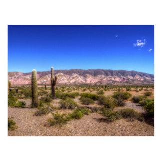 Postal Plantas del cactus de Salta la Argentina y colina
