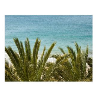 Postal Playa de Benidorm