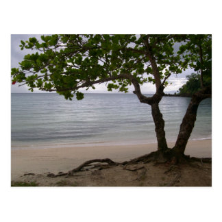 Postal Playa de Escondido