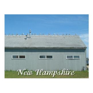 Postal Playa de Hampton, gaviotas de New Hampshire
