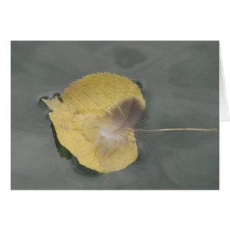 Postal pluma en hoja amarilla en la agua, en blanc tarjeta de felicitación