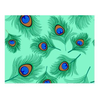 Postal Plumas del pavo real de la turquesa en la