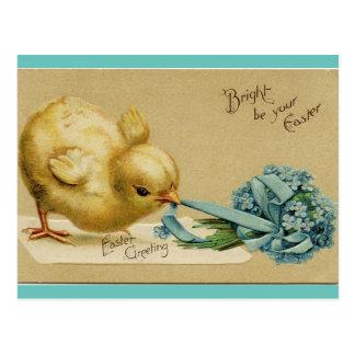 Postal Polluelo de Pascua del vintage
