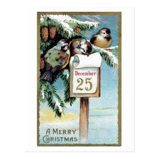 """Postal """"Postal 1900 de los pájaros del navidad"""" -"""