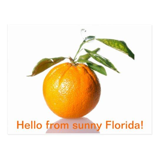 Postal ¡Postal anaranjada - hola de la Florida soleada!