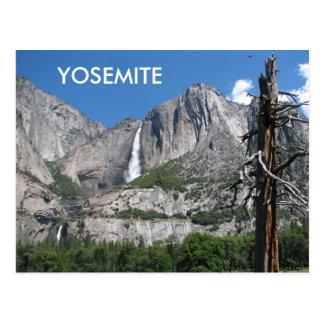 Postal ¡Postal de Yosemite!