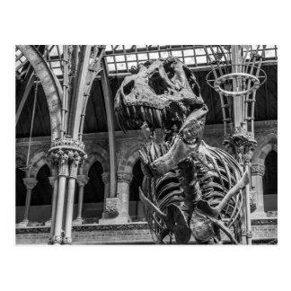 """Postal """"Postales del esqueleto de T-Rex"""""""
