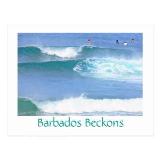 Postal postcard/BARBADOS TIENTA LA COGIDA DE ALGUNAS