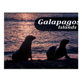 Postal Poster de la isla de las Islas Galápagos