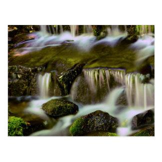 Postal Primavera del helecho, parque nacional de