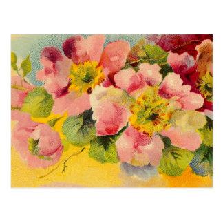 Postal Primaveras florales del vintage rosado elegante