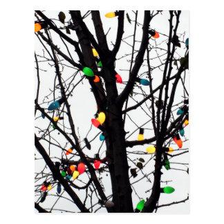 Postal Primer de las luces de navidad coloridas en ramas
