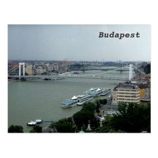 Postal Puentes sobre el Danubio