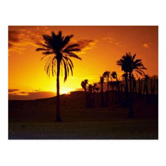 Postal Puesta del sol en el desierto, desierto del
