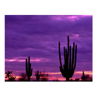 Postal Puesta del sol, Scottsdale, Arizona