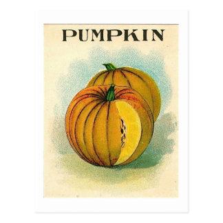 postal pumpking del paquete de la semilla del