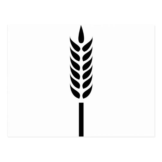 Postal punto del trigo del cereal
