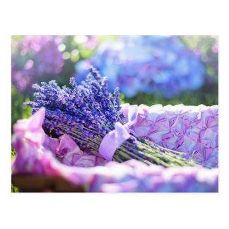 Postal púrpura del prado de la primavera de la