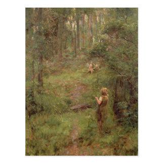 Postal Qué la niña vio en Bush, 1904