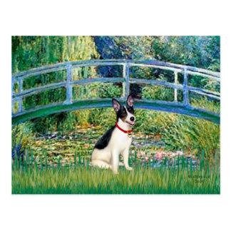 Postal Rata Terrier - puente