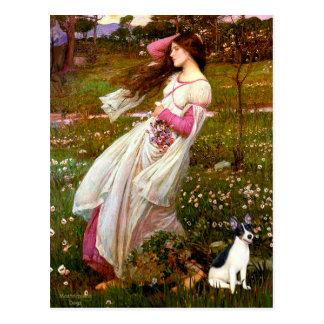 Postal Rata Terrier - Windflowers