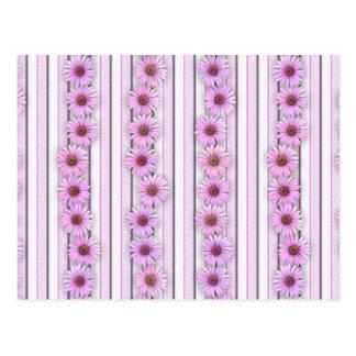 Postal Rayas de la flor del Echinacea