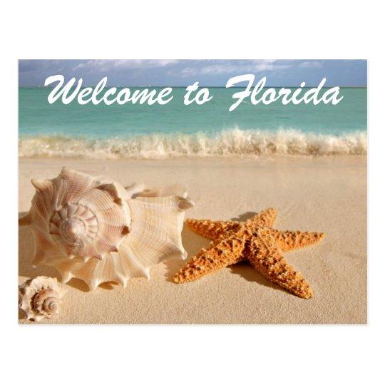 Postal Recepción a la Florida