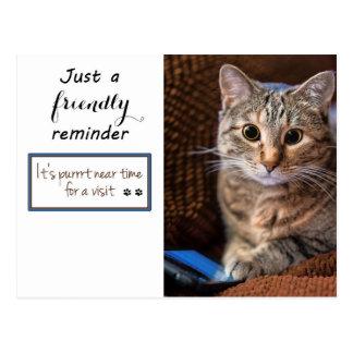 Postal Recordatorio de la cita del gatito del teléfono