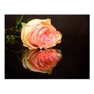 Postal Reflexiones color de rosa