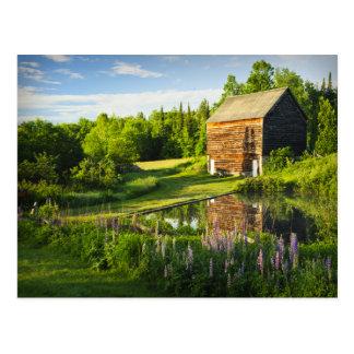 Postal Reflexiones de la primavera en el Adirondacks,