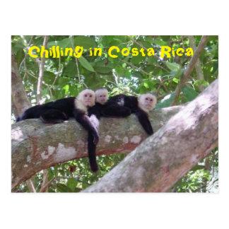 Postal Refrigeración en Costa Rica