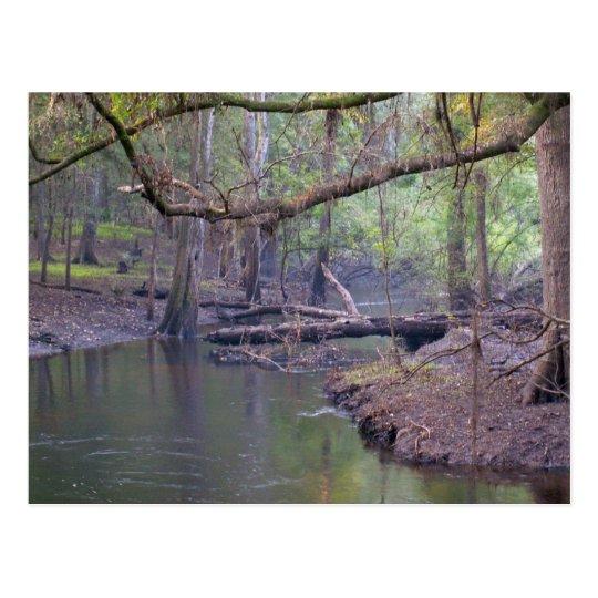 Postal Remanso del río de Suwannee