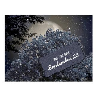 Postal Reserva azul encantada del árbol de la noche la