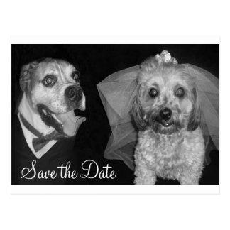 Postal Reserva del perrito la fecha