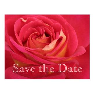 Postal Reserva del rosa la 95.a celebración del