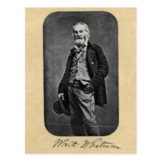 Postal Retrato de la edad 41 de Walt Whitman