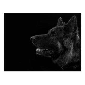 Postal Retrato de un perro de pastor alemán
