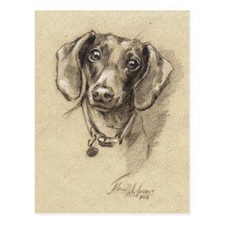 Postal Retrato del Dachshund