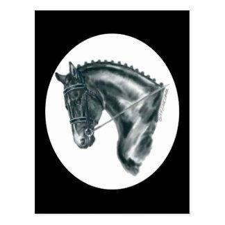 Postal Retrato negro del caballo del Dressage