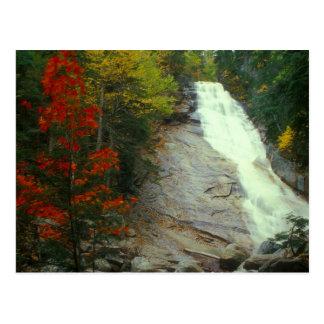 Postal Ripley baja la cascada blanca del otoño de las