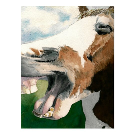 Postal Risa de caballo