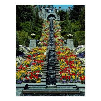 Postal Rojo en el parque, flores de Mainau