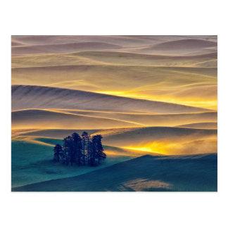 Postal Rolling Hills del trigo en la salida del sol el |