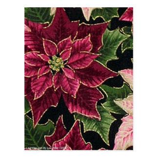 Postal Rosa retro de Borgoña del Poinsettia 50s