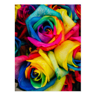 Postal Rosas del arco iris