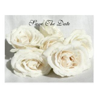 Postal Rosas en el lino
