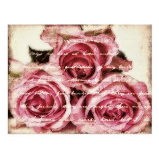 Postal Rosas rosados del vintage
